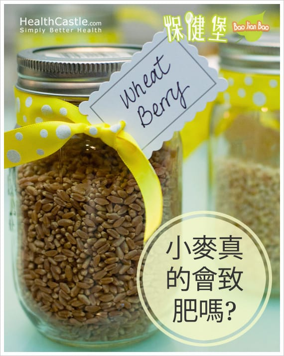 Wheat Berry Poster